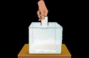 ¿Qué tipo de votos existen?