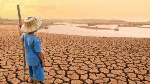 El cambio climático y la universidad